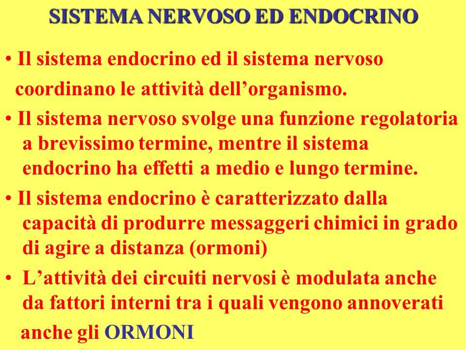 SISTEMA NERVOSO ED ENDOCRINO