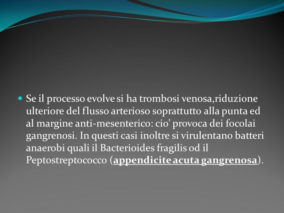 Se il processo evolve si ha trombosi venosa,riduzione ulteriore del flusso arterioso soprattutto alla punta ed al margine anti-mesenterico: cio' provoca dei focolai gangrenosi.