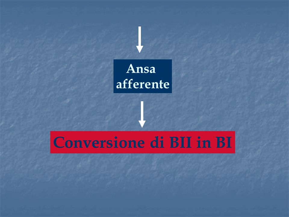Conversione di BII in BI