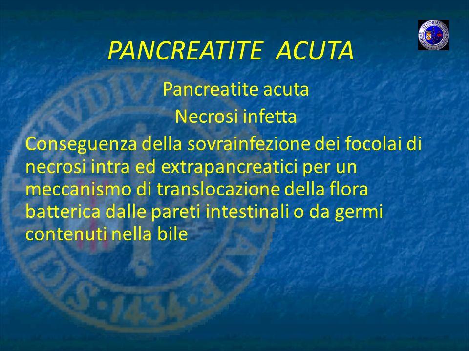 PANCREATITE ACUTA Pancreatite acuta Necrosi infetta