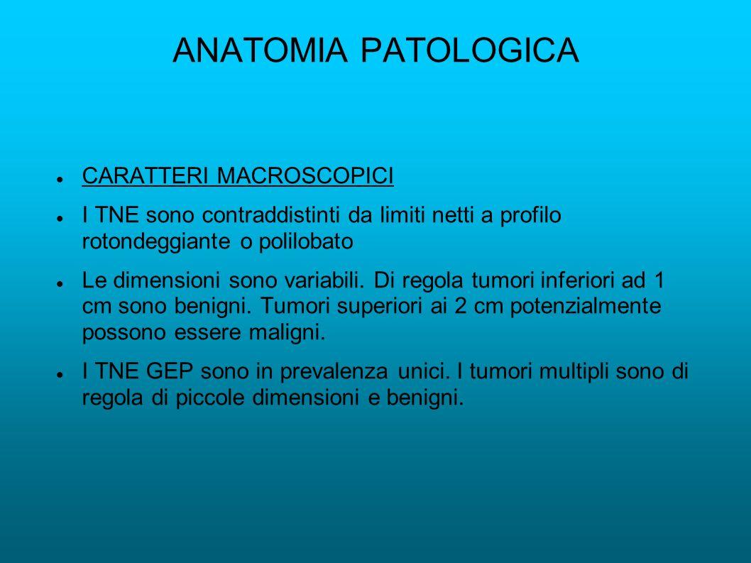 ANATOMIA PATOLOGICA CARATTERI MACROSCOPICI