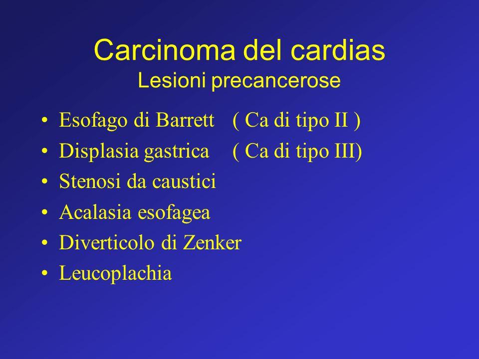 Carcinoma del cardias Lesioni precancerose