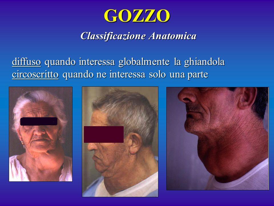 Classificazione Anatomica