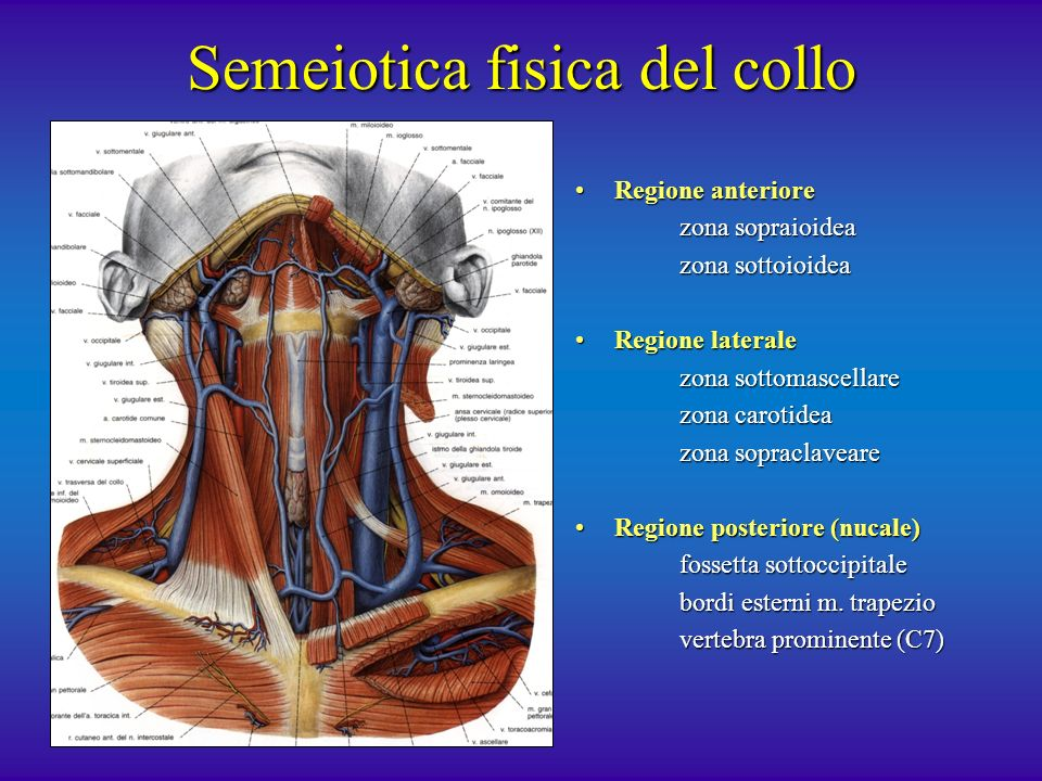 Semeiotica fisica del collo