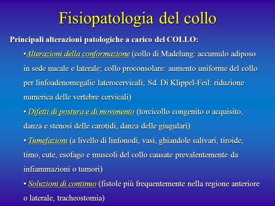 Fisiopatologia del collo
