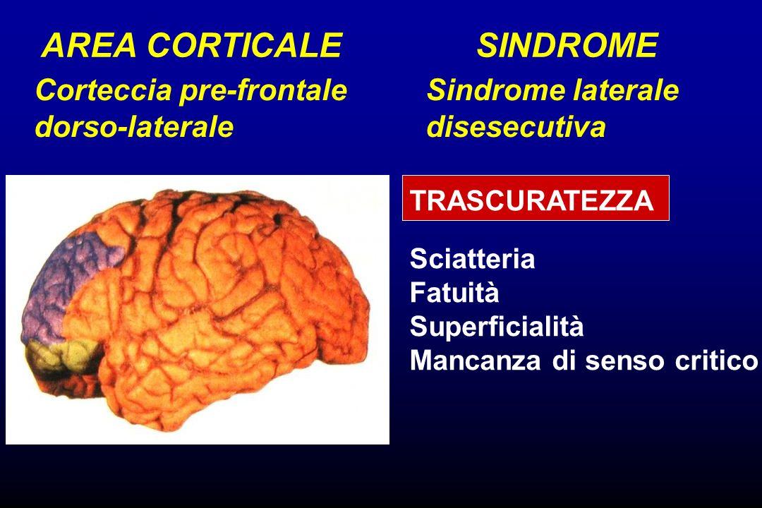 AREA CORTICALE SINDROME Corteccia pre-frontale dorso-laterale