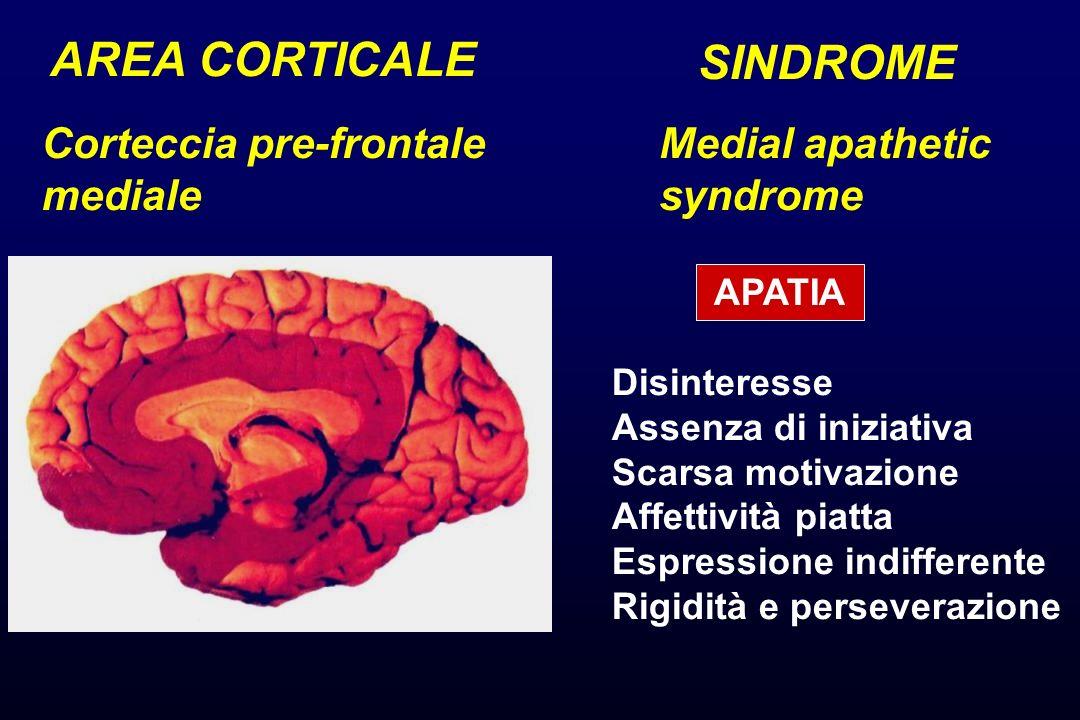 AREA CORTICALE SINDROME Corteccia pre-frontale mediale