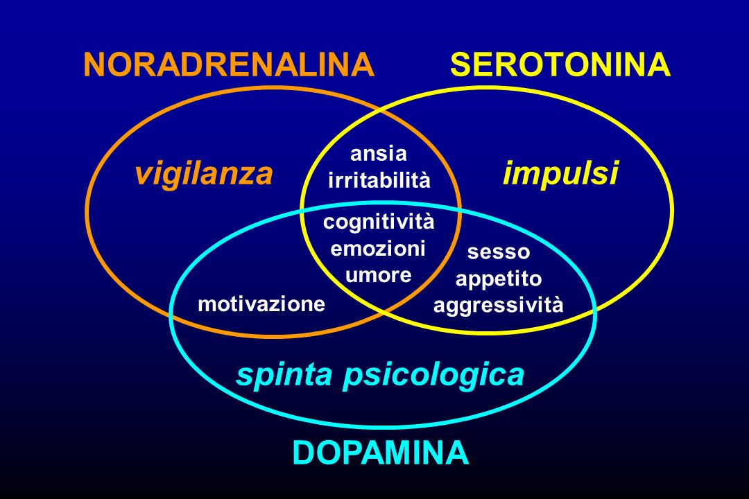 NORADRENALINA SEROTONINA vigilanza impulsi spinta psicologica DOPAMINA