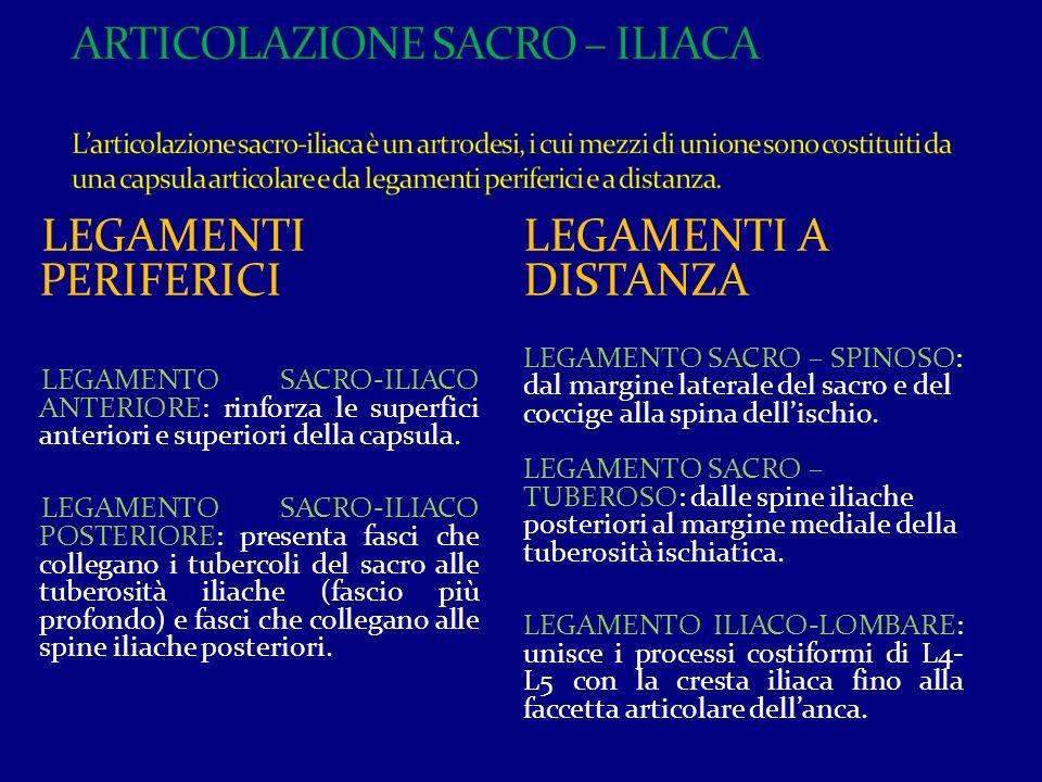 ARTICOLAZIONE SACRO – ILIACA L'articolazione sacro-iliaca è un artrodesi, i cui mezzi di unione sono costituiti da una capsula articolare e da legamenti periferici e a distanza.