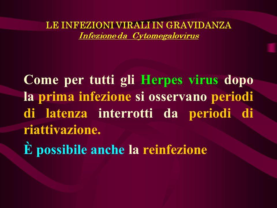 LE INFEZIONI VIRALI IN GRAVIDANZA Infezione da Cytomegalovirus