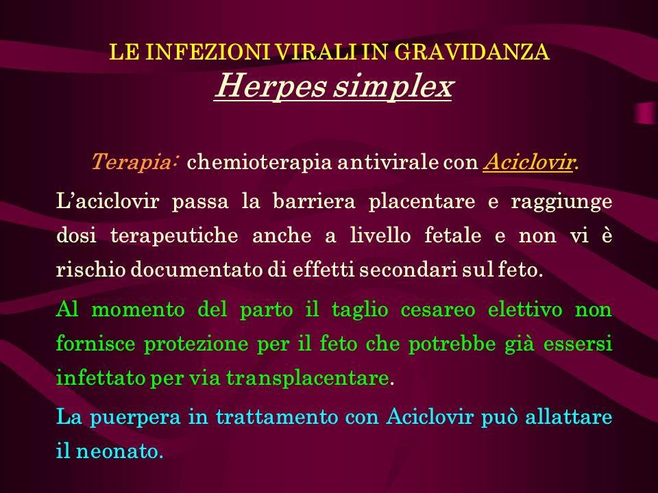 LE INFEZIONI VIRALI IN GRAVIDANZA Herpes simplex