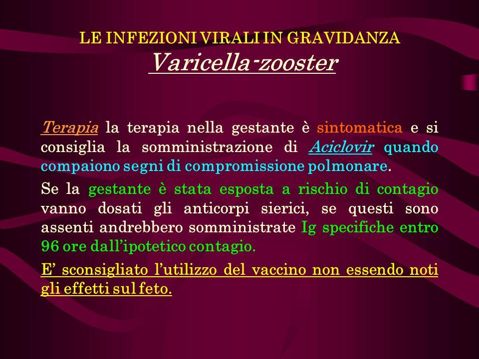 LE INFEZIONI VIRALI IN GRAVIDANZA Varicella-zooster