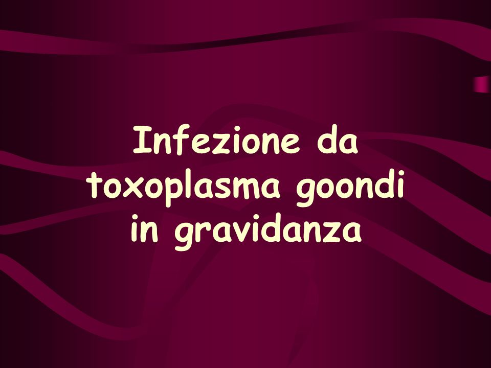 Infezione da toxoplasma goondi in gravidanza