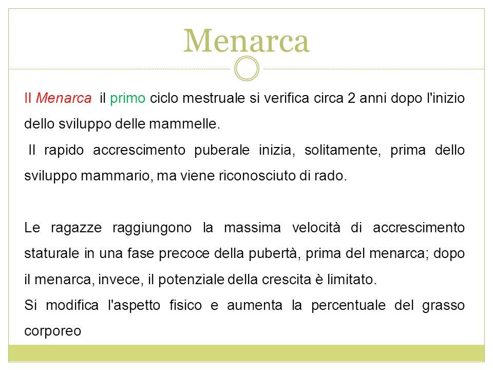 Menarca Il Menarca il primo ciclo mestruale si verifica circa 2 anni dopo l inizio dello sviluppo delle mammelle.