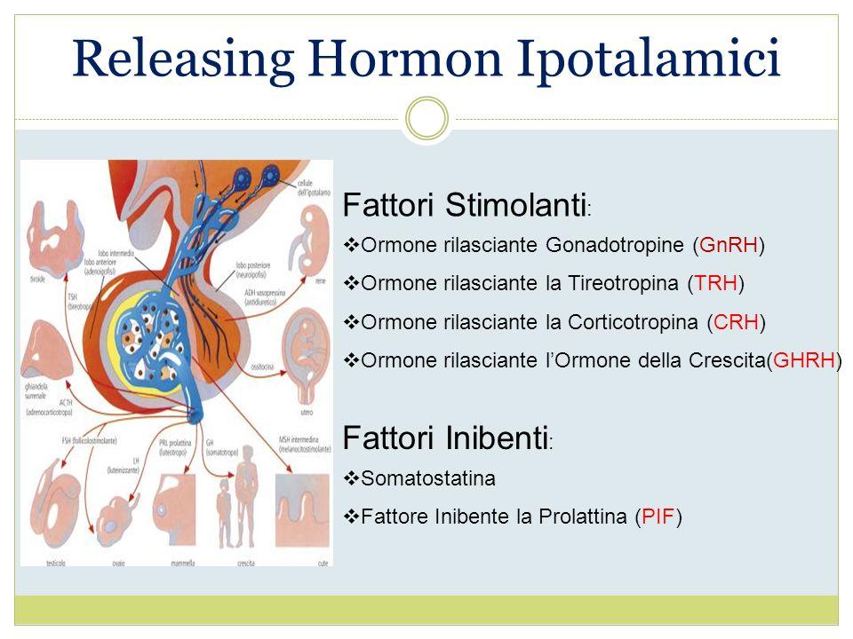 Releasing Hormon Ipotalamici