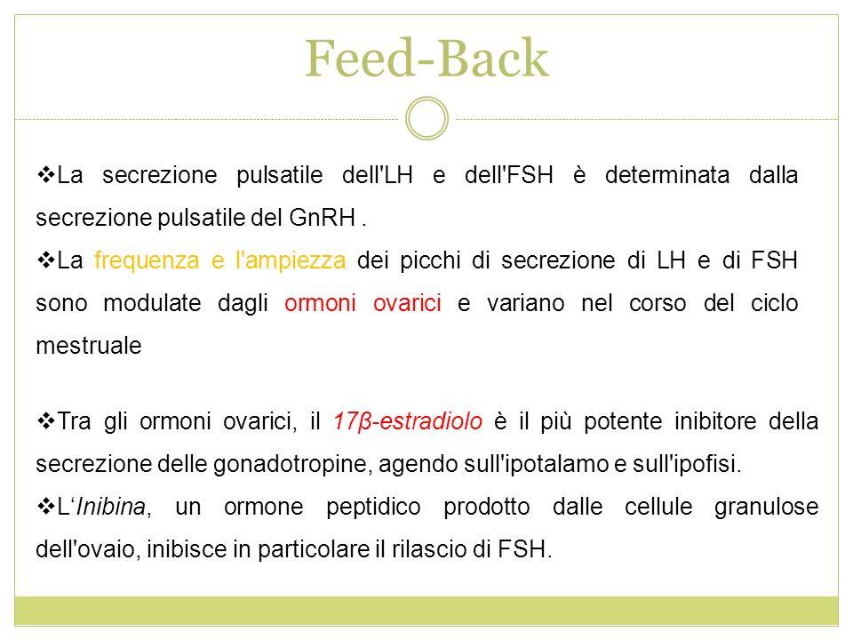 Feed-Back La secrezione pulsatile dell LH e dell FSH è determinata dalla secrezione pulsatile del GnRH .