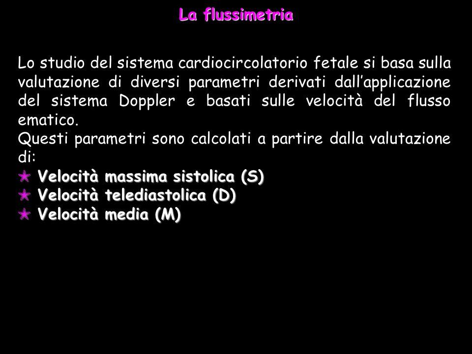 La flussimetria