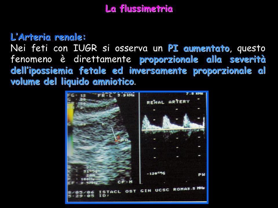 La flussimetria L'Arteria renale: