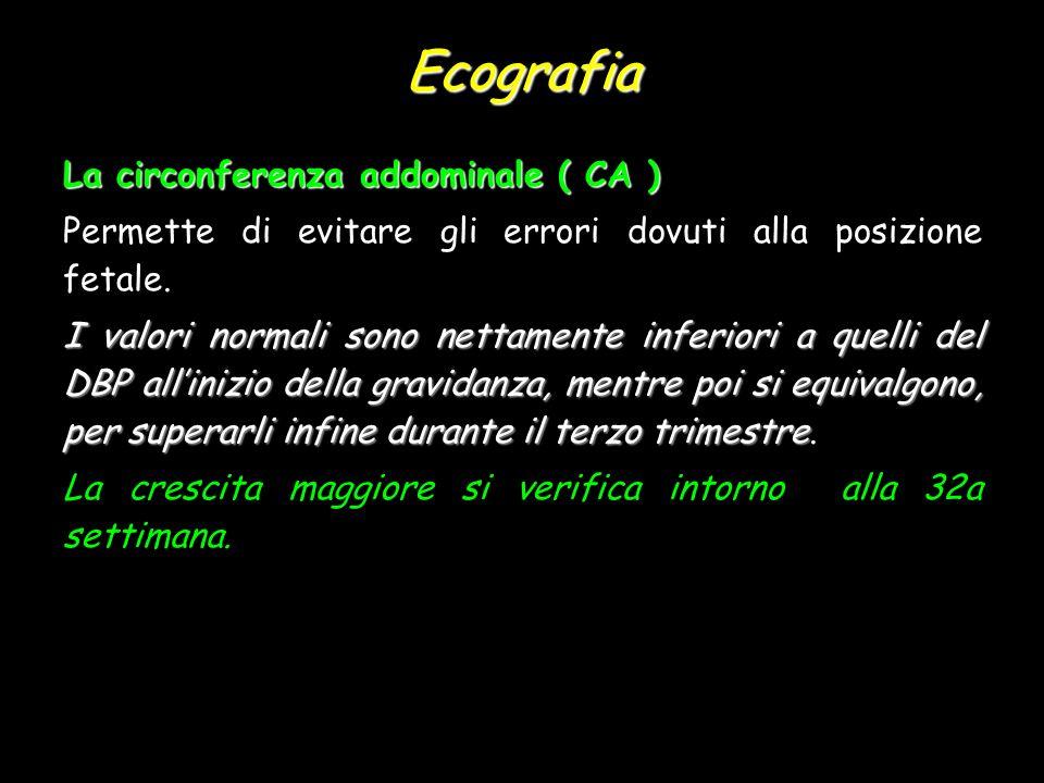 Ecografia La circonferenza addominale ( CA )