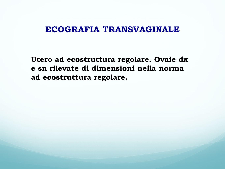 ECOGRAFIA TRANSVAGINALE