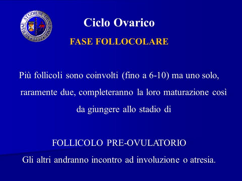Ciclo Ovarico FASE FOLLOCOLARE