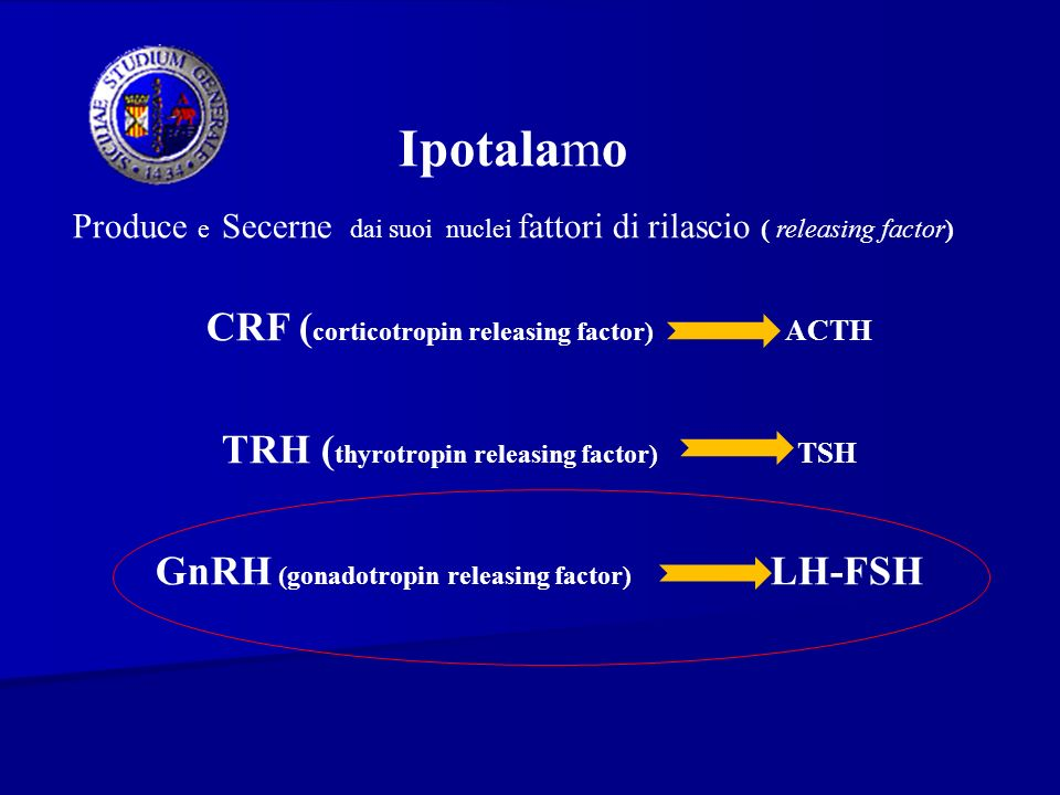 Ipotalamo CRF (corticotropin releasing factor) ACTH