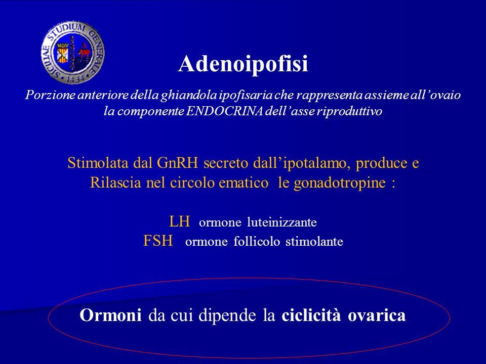 Adenoipofisi Ormoni da cui dipende la ciclicità ovarica