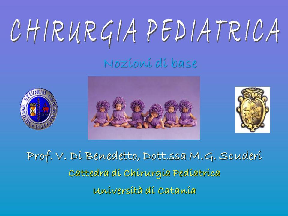 Nozioni di base Prof. V. Di Benedetto, Dott.ssa M.G. Scuderi