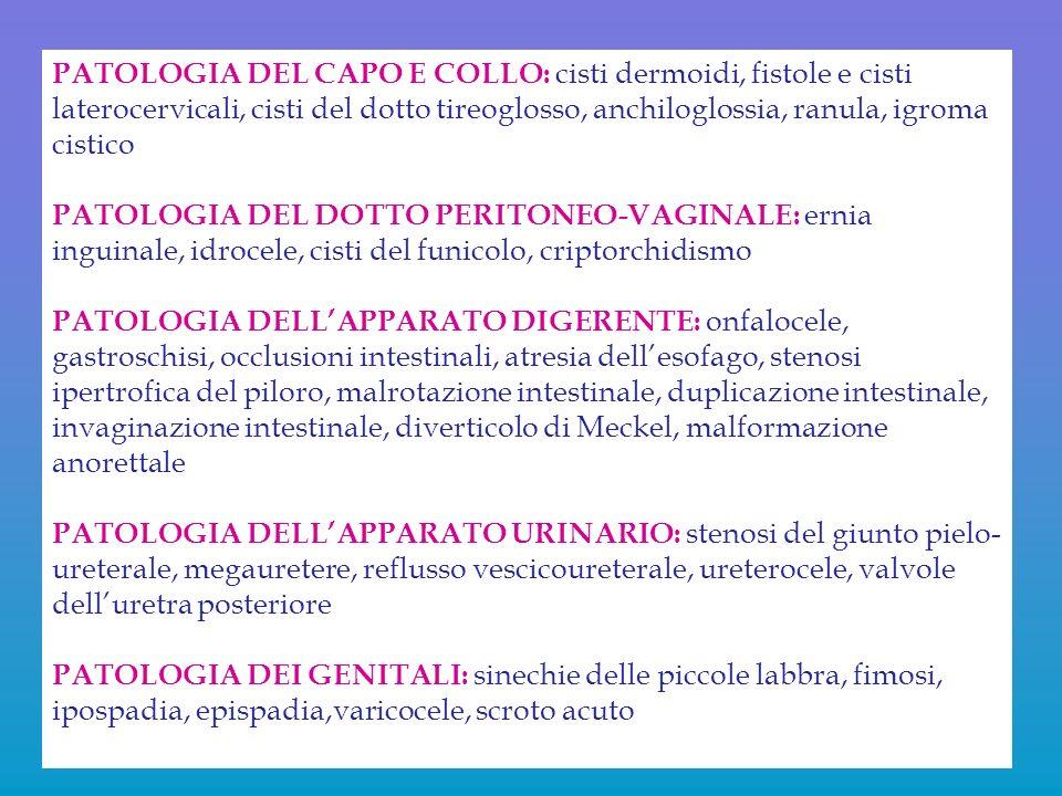PATOLOGIA DEL CAPO E COLLO: cisti dermoidi, fistole e cisti laterocervicali, cisti del dotto tireoglosso, anchiloglossia, ranula, igroma cistico