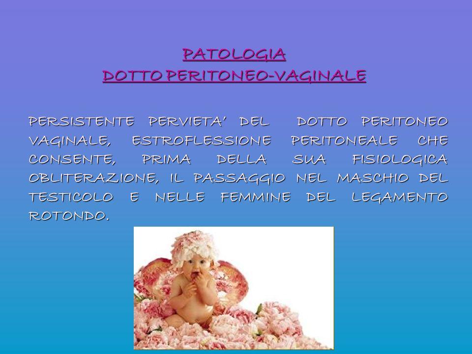 PATOLOGIA DOTTO PERITONEO-VAGINALE