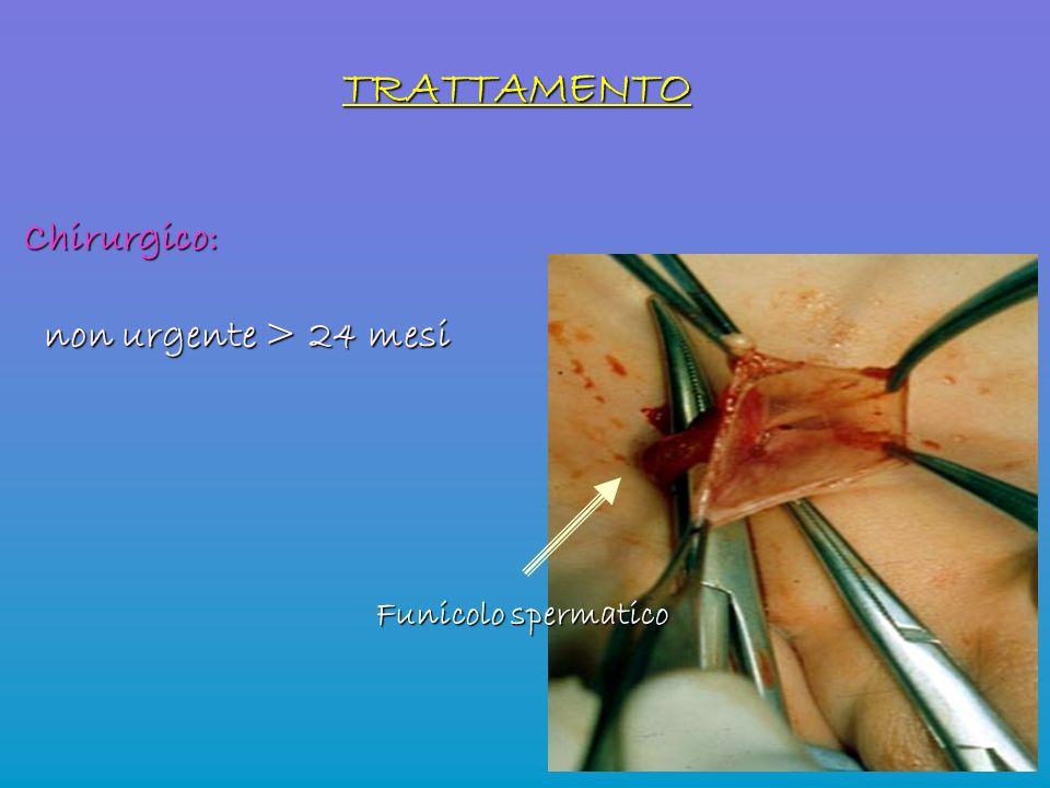 TRATTAMENTO Chirurgico: non urgente > 24 mesi Funicolo spermatico