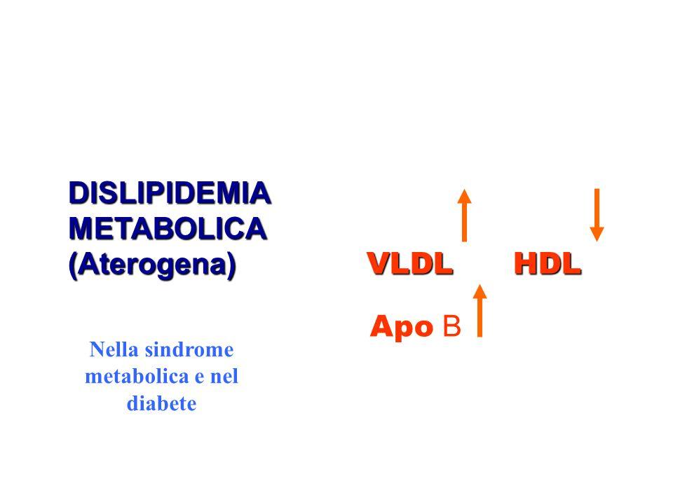 Nella sindrome metabolica e nel diabete