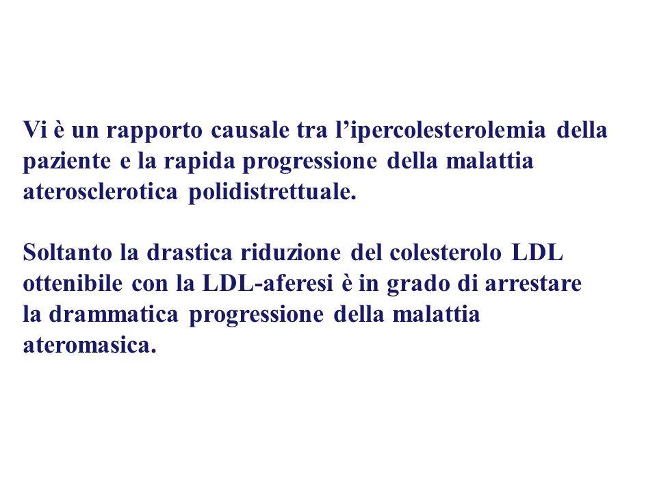 Vi è un rapporto causale tra l'ipercolesterolemia della