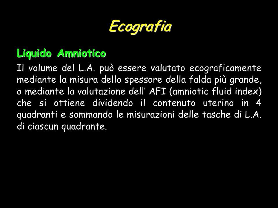 Ecografia Liquido Amniotico