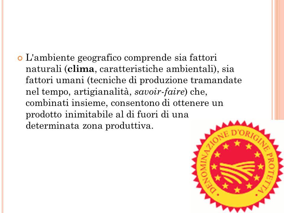 L ambiente geografico comprende sia fattori naturali (clima, caratteristiche ambientali), sia fattori umani (tecniche di produzione tramandate nel tempo, artigianalità, savoir-faire) che, combinati insieme, consentono di ottenere un prodotto inimitabile al di fuori di una determinata zona produttiva.