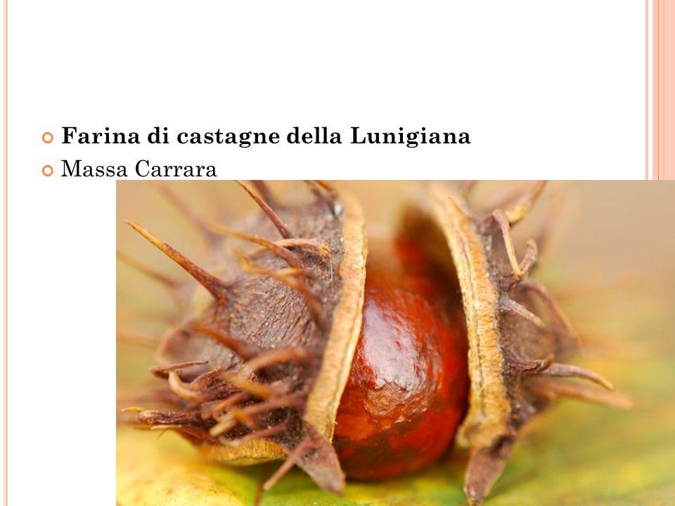 Farina di castagne della Lunigiana