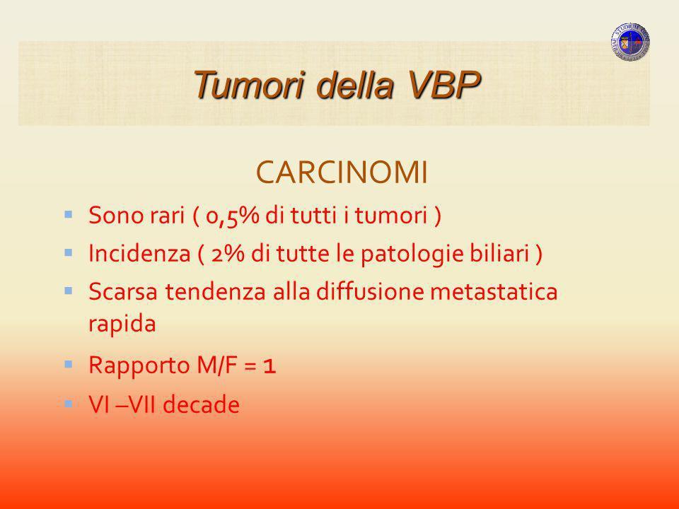 Tumori della VBP CARCINOMI Sono rari ( 0,5% di tutti i tumori )