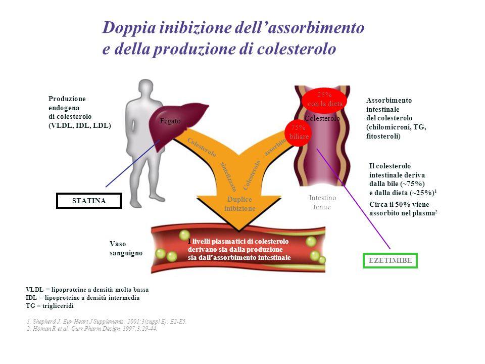 Doppia inibizione dell'assorbimento e della produzione di colesterolo
