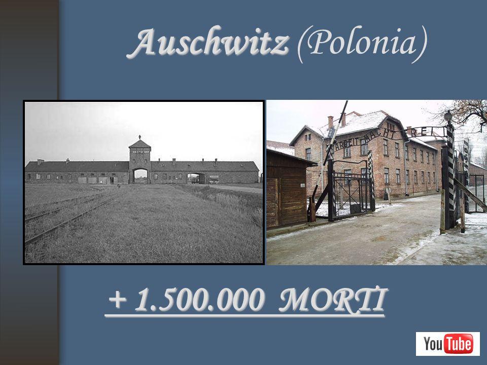 Auschwitz (Polonia) + 1.500.000 MORTI