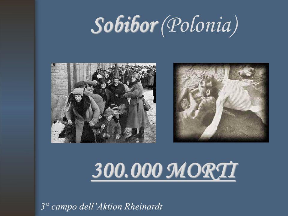 Sobibor (Polonia) 300.000 MORTI 3° campo dell'Aktion Rheinardt