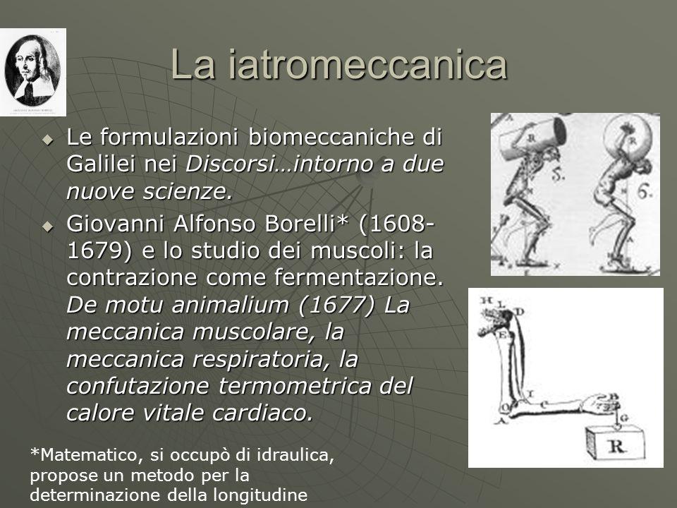 La iatromeccanica Le formulazioni biomeccaniche di Galilei nei Discorsi…intorno a due nuove scienze.