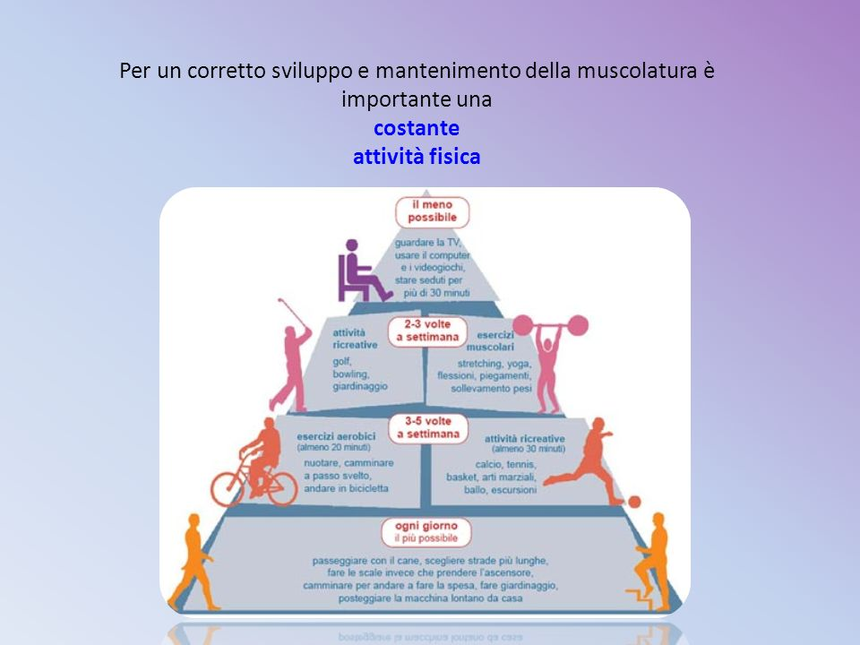 Per un corretto sviluppo e mantenimento della muscolatura è importante una