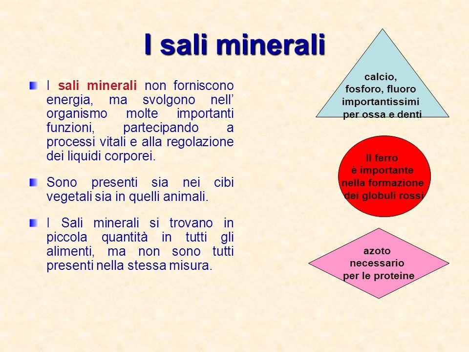 I sali minerali calcio, fosforo, fluoro. importantissimi. per ossa e denti.