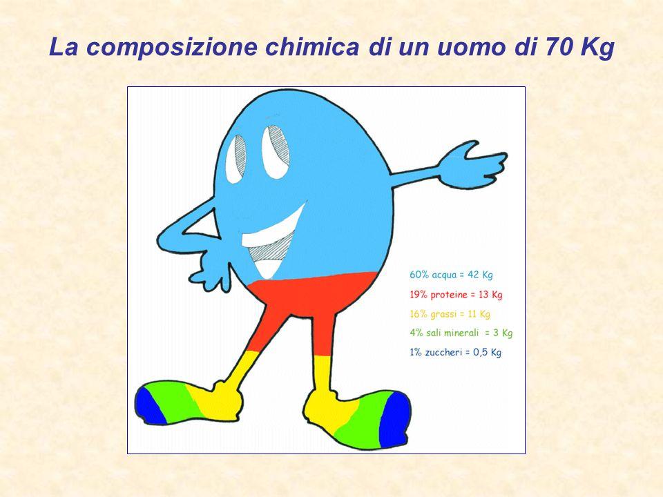 La composizione chimica di un uomo di 70 Kg