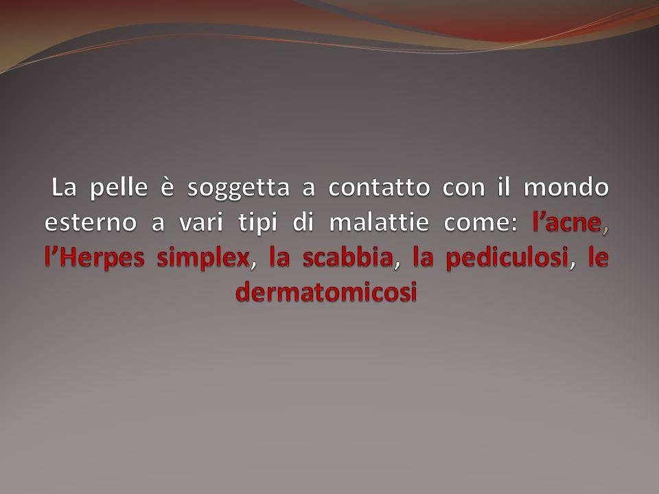 La pelle è soggetta a contatto con il mondo esterno a vari tipi di malattie come: l'acne, l'Herpes simplex, la scabbia, la pediculosi, le dermatomicosi