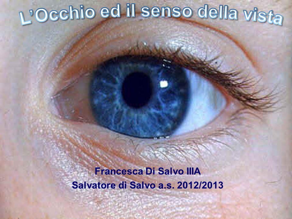 Francesca Di Salvo IIIA Salvatore di Salvo a.s. 2012/2013