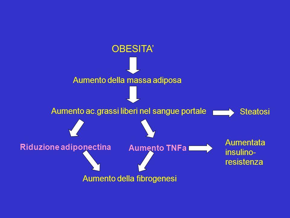 OBESITA' Aumento della massa adiposa