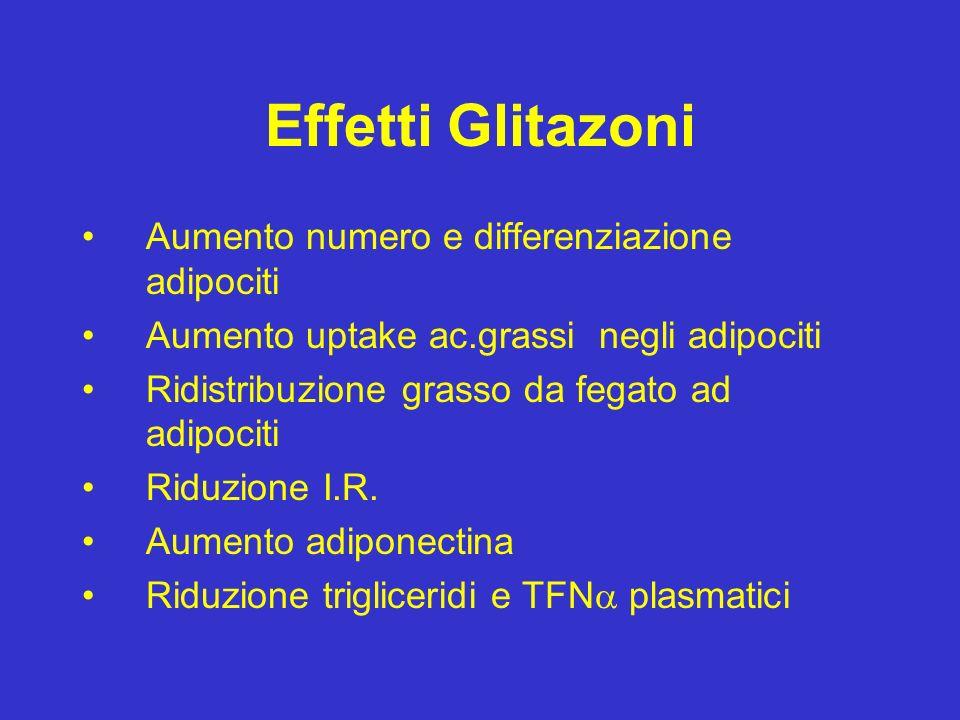 Effetti Glitazoni Aumento numero e differenziazione adipociti