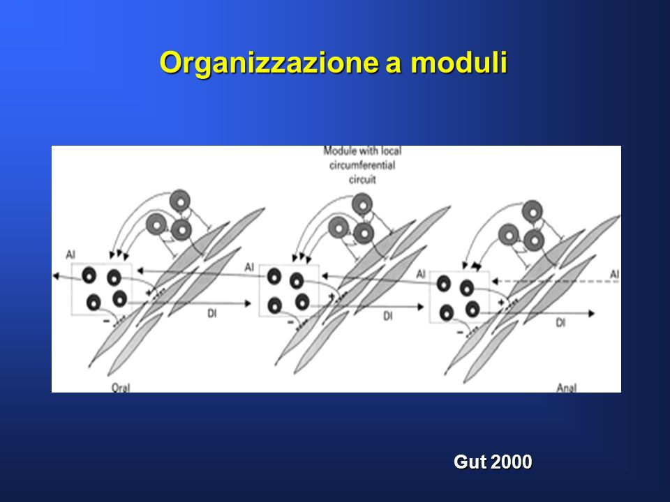 Organizzazione a moduli