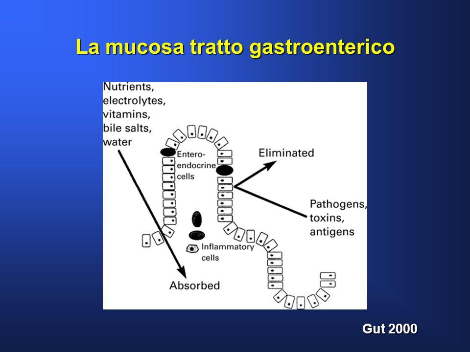 La mucosa tratto gastroenterico